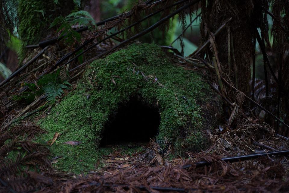 cave-1566205_960_720