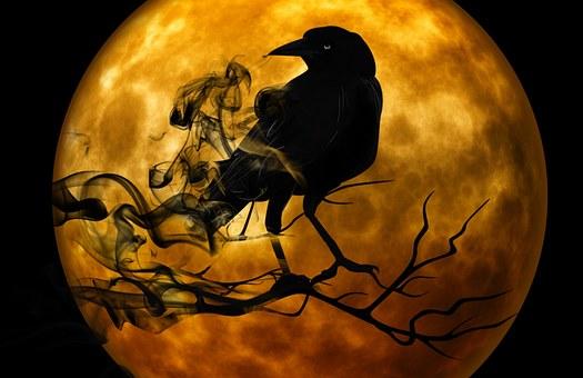 corbeau se formant dans de la fumée noir perché sur une branche