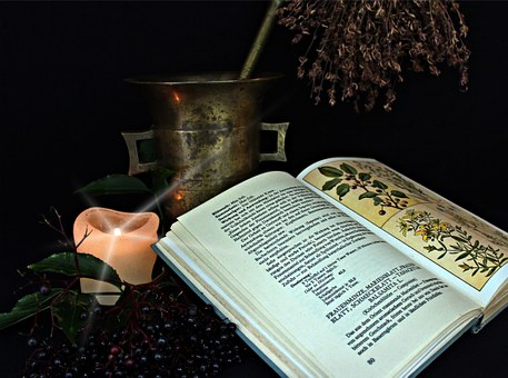 book on plant with burning candle