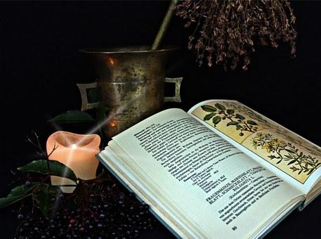 livre de préparation remède de plantes