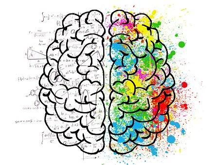 image d'un cerveau en mode de réflexion